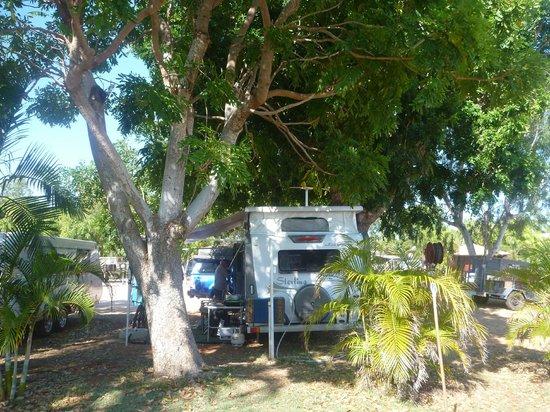 Broome Vacation Village: lovely shady spots