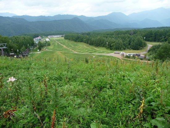 Hunter Mt. Shiobara : リフトを降りた所から麓方面の斜面