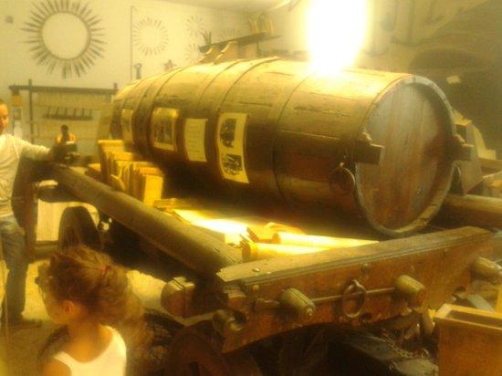 Agriturismo Casa Nuova: ..visita al museo...