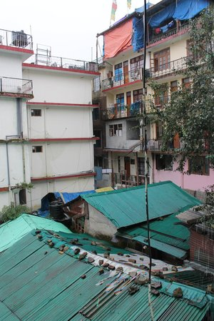 Hotel Tibet: View from a back bedroom, basement level. Eh.