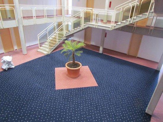 Pical Hotel: Einsame Palme