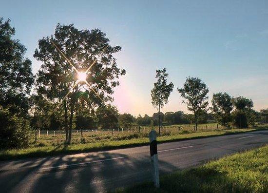 Hotel Norden Norddeich: Die Natur gleich nebenan