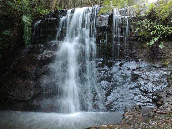 Shutterbug Walkabouts: Silver Falls