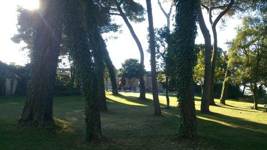 Château Sainte Colombe : Vue de la Piscine depuis le Parc
