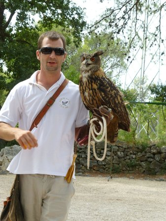 Sokolarski Raptor Centre : The owner and his owl