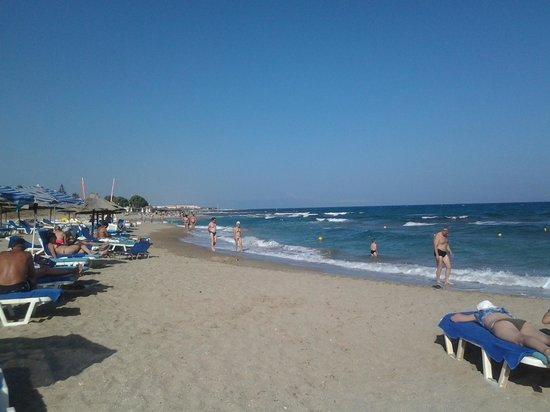 Bella Beach Hotel : strand