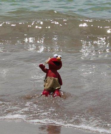 Johan's Beach Resort: The official Subic Bay resrot of Elmo
