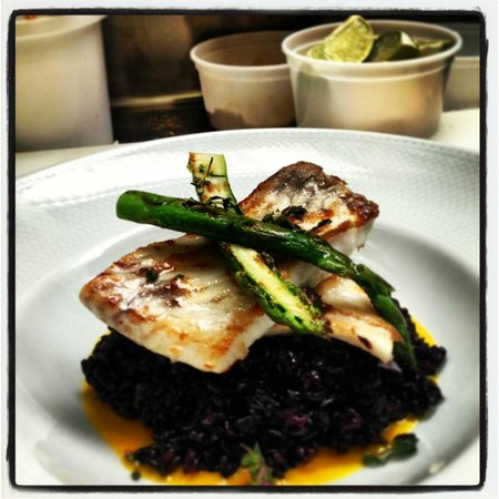Duke Restaurant : Fresh fish of the day straight from the market with corn puree,black venus rice and crispy espar