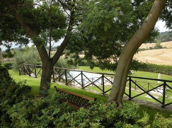 Agriturismo Casale della Vorga: piscina