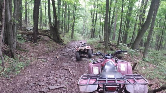 Stone Tavern Farm: One of the many trails for ATV riding.