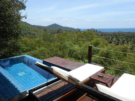 The Place Luxury Boutique Villas: Vue de la terrasse et de la piscine de jour