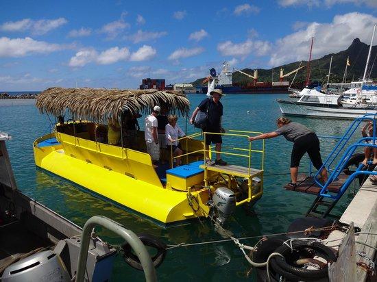 Raro Reef Sub: the sub