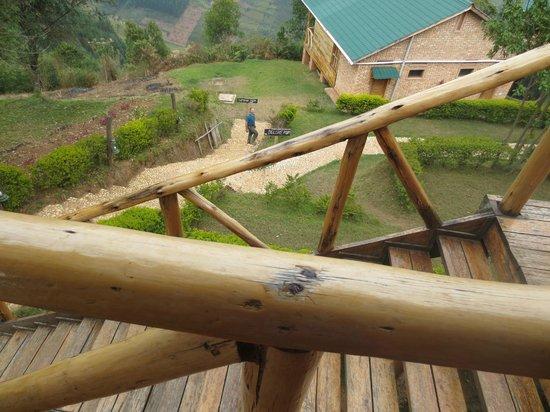 Ruhija Gorilla Safari Lodge: Stairs down to Cabins