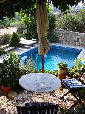 Little Lodge Guest House: Blick auf den Pool