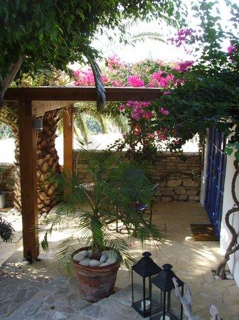 Little Lodge: Blick auf die Terrasse vor dem Zimmer
