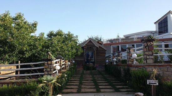 L'Auberge Berbere: Vue sur la récéption
