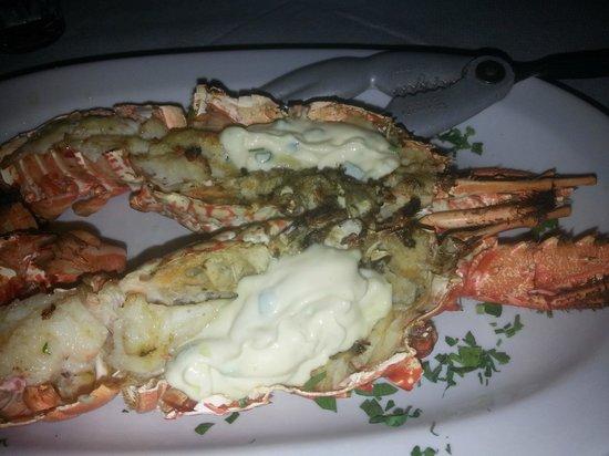 Summertime restaurant : Lobster
