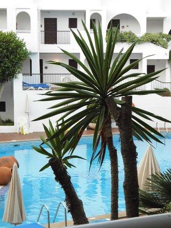 Sol Cala d'Or Apartamentos: pool area