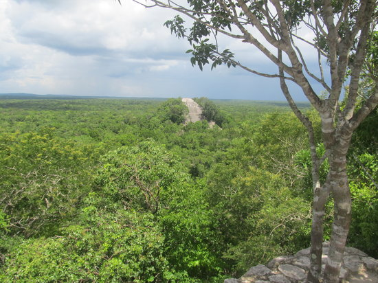Calakmul Archaeological Zone : View of Structre I from Structure II
