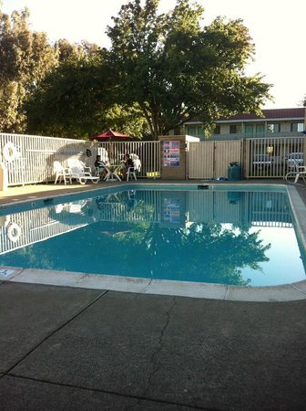 Motel 6 Petaluma: Early morning pool shot.