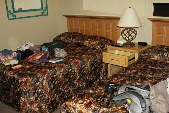 Kokopelli Inn : Or room