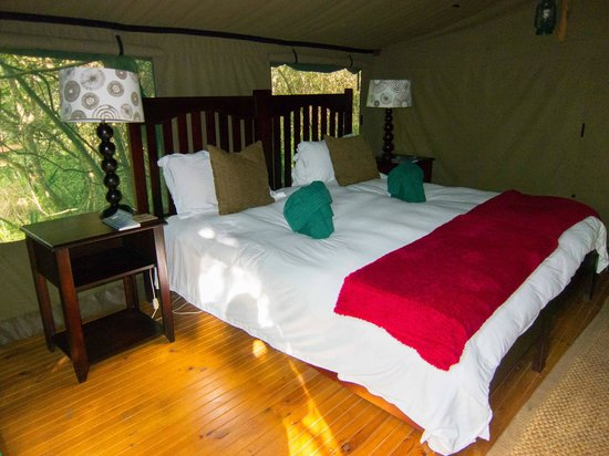 Sibuya Game Reserve-Forest Camp
