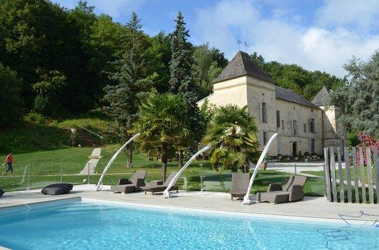 Chateau de Courtebotte: La piscine et le château