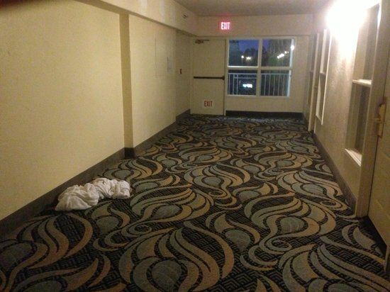 Embassy Suites by Hilton Santa Ana Orange County Airport: Dirty towels left in the hallway