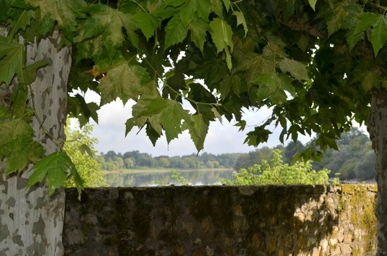 Chateau de Courtebotte: Repos sous les platanes en contemplant la dordogne