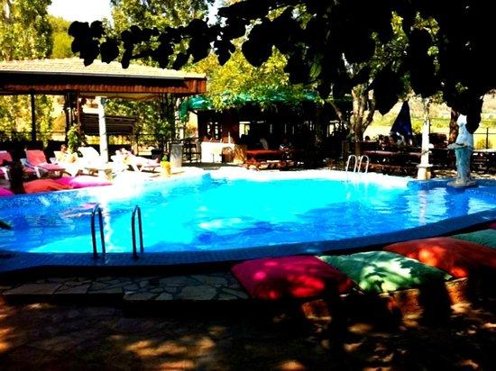 Atilla's Getaway: Poolside