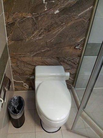 BEST WESTERN PREMIER Ocean Hotel: トイレ