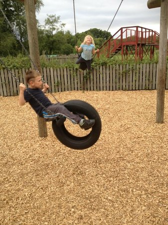 Moors Valley Country Park and Forest: Excellent swings.