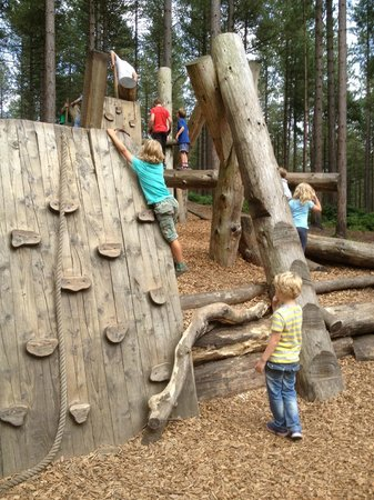 Moors Valley Country Park and Forest: Clever climbs.