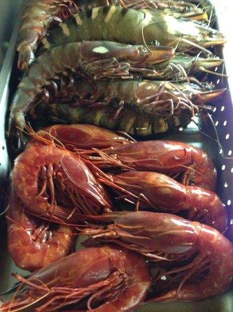 Restaurante Sueste : shrimp
