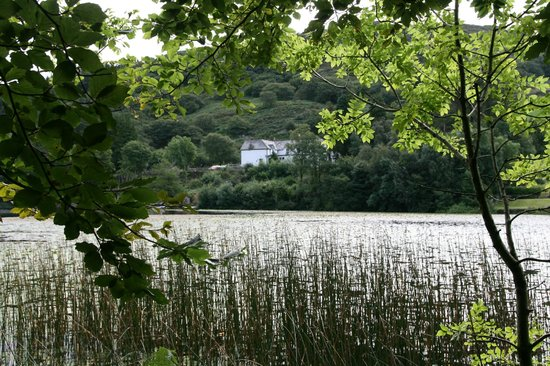 Gwesty Gwernan Hotel: More from over the lake