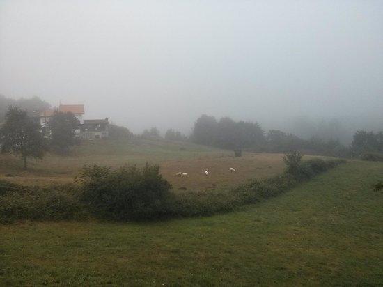 Hotel Rural El Texu: despertar por la mañana