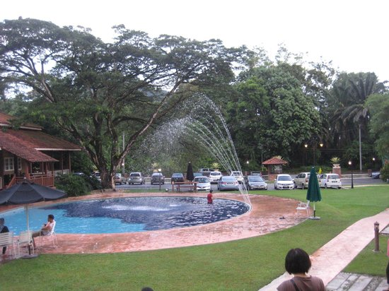 Kamalodge Cafe & Resort: Swimming Pool