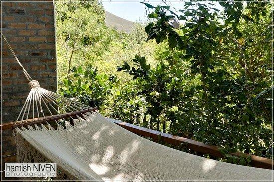 Alta Bay: Hamoc in bottom garden