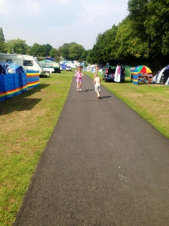 Lady's Mile Holiday Park: Safe for children to play(with supervision)