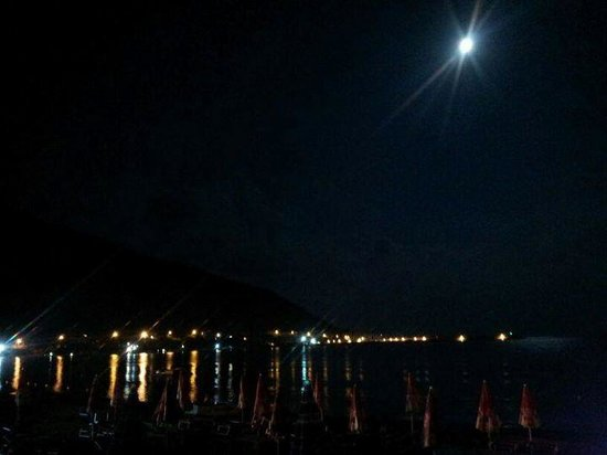 Hotel delle Palme : carmela 25-29 agosto