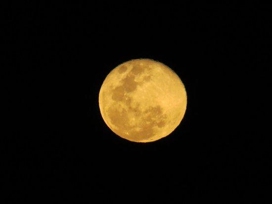 Ama Amanzi Bush Lodge: The moon in the clear skies of Ama Amanzi