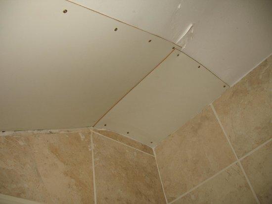 Adelphi Guesthouse: tetto bagno