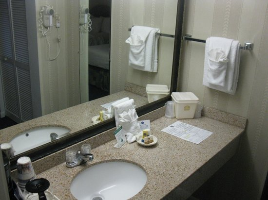Best Western Port St. Lucie: Sink area