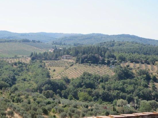 Le Terrazze del Chianti Bed & Breakfast: View from the breakfast nook
