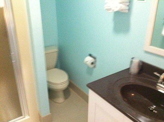 Pontiac Lodge: Nice, clean bathroom (much cleaner than most chain hotels)