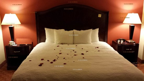 Hampton Inn Houston/Humble-Airport Area : Honeymoon Night