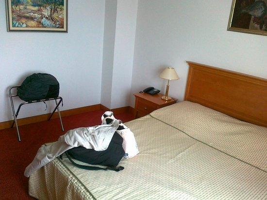 Hotel Villa Dvor: camera
