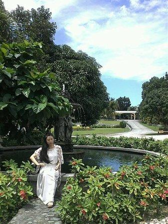 The Peacock Garden: 정원입니다. 정말 그림같이 예쁩니다.