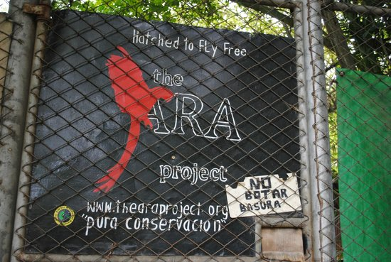 The Ara Project Sign