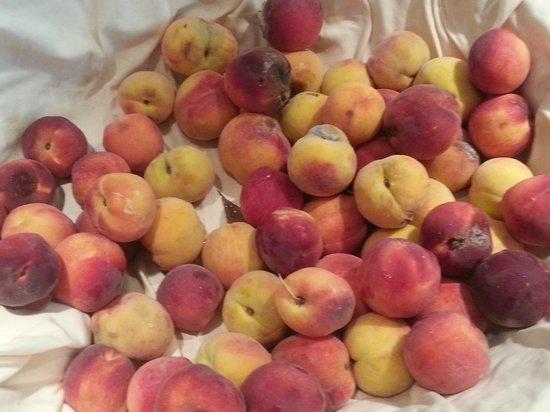 Furnari, Italia: buffet frutta
